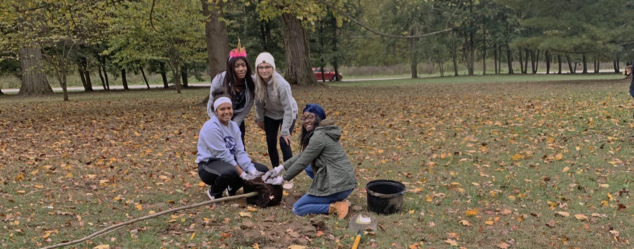 Volunteers planting a tree.