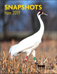 DNR 2019 Wildlife Science Report front image