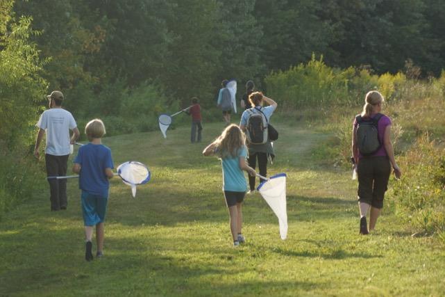 People walk through field with butterfly net
