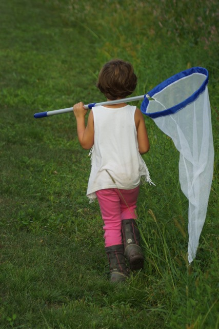 Child with a butterfly net
